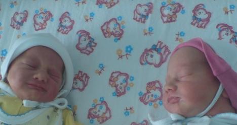 здоровые двойняшки