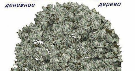 мой доход в месяц составляет 50 000руб