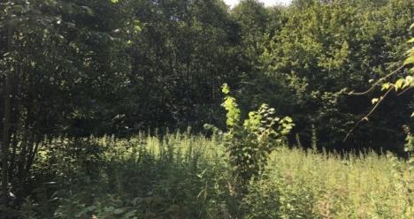 Продать в это лето земельный участок.