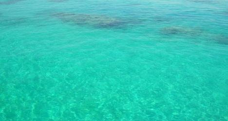 поехать на море этим летом