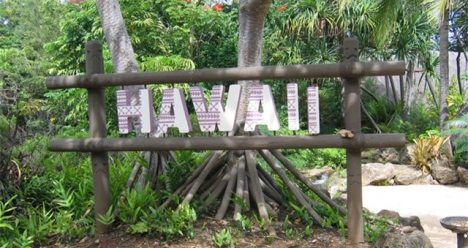 поездка на Гавайи