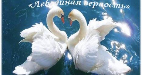МОЙ ЛЮБИМЫЙ - САМЫЙ ЛЮБЯЩИЙ И ВЕРНЫЙ  МУЖ НА СВЕТЕ!